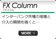 FX Column